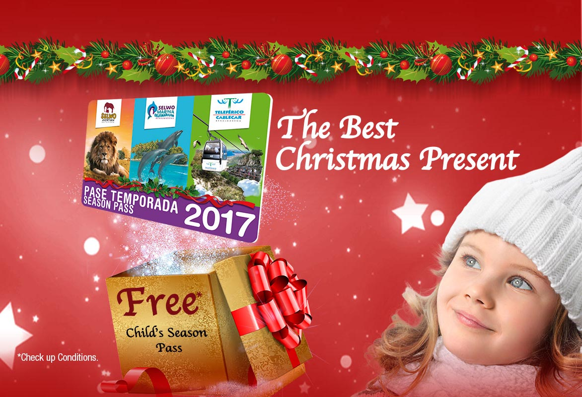 Selwo Costa del Sol offers you the best gift this Christmas